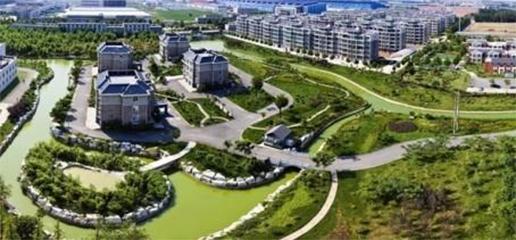 西王生态园湖体周边绿化工程