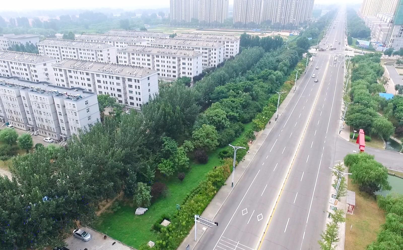 昌邑市南苑东街、奎聚路绿地补植等绿化工程